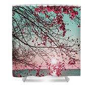 Teal And Fuchsia - Autumn Sunrise Reimagined Shower Curtain