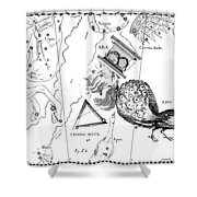 The Austral Constellations Of The Altar, The Southern Triangle And The Peacock Shower Curtain