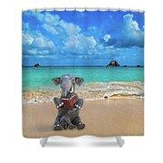 The Beach Story Shower Curtain