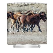 The Boys In The Band, No. 2 Shower Curtain by Belinda Greb