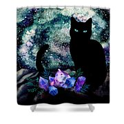 The Cat With Aquamarine Eyes And Celestial Crystals Shower Curtain