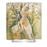 The Cherry Tree Study - 1891 - Musee Marmottan France Shower Curtain
