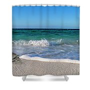 The Crab And The Sea Shower Curtain