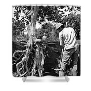The Dig Replants A Tree Shower Curtain