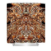 The Divine Chariot Shower Curtain