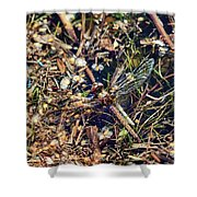 The End. Vagrant Darter Shower Curtain