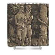 The Fall Of Mankind, 1511  Shower Curtain