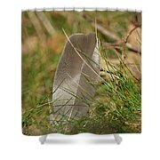 The Feather Shower Curtain