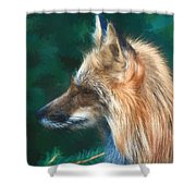 The Fox 235 - Painting Shower Curtain