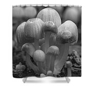 The Funghi Family Shower Curtain