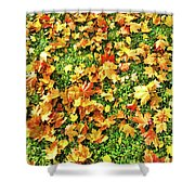 The Golden Grove.  Shower Curtain