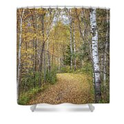 The Golden Path Shower Curtain by Susan Rissi Tregoning