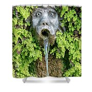 The Hundred Fountains Shower Curtain