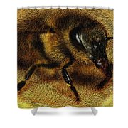 The Killer Bee Shower Curtain