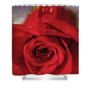 The Magic Of Roses Shower Curtain