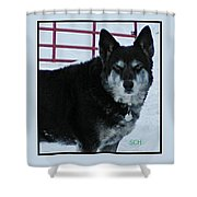 The Magnificent Guardian Of The Gate Shower Curtain
