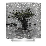 The Mangrove Shower Curtain