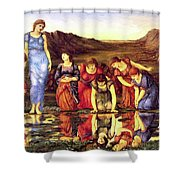 The Mirror Of Venus 1875 Shower Curtain
