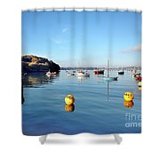 The Mylor Dolphin Shower Curtain