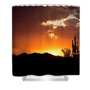 The Night Begins Shower Curtain