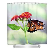The Queen Of Butterflies  Shower Curtain