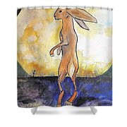The Rabbit Prince Shower Curtain