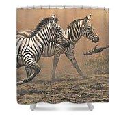 The Race - Zebras Shower Curtain by Alan M Hunt