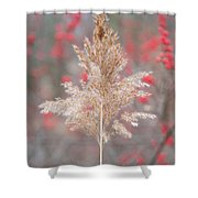 The Red Of Winter Shower Curtain