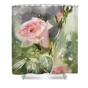 The Rose From A Misty Appalachia Shower Curtain