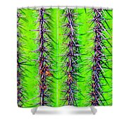 The Spines Of The Cactus Shower Curtain