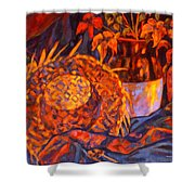 The Straw Hat Shower Curtain