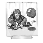 The String Theory Shower Curtain
