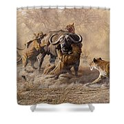 The Take Down - Lions Attacking Cape Buffalo Shower Curtain by Alan M Hunt