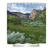 The Thimble Rock Shower Curtain