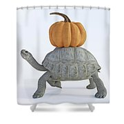 The Tortoise And The Pumpkin Shower Curtain