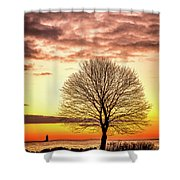 The Tree Shower Curtain by Jeff Sinon