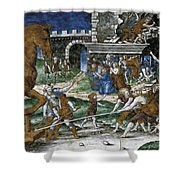 The Trojan Horse Is Hauled Into The City  After       Shower Curtain