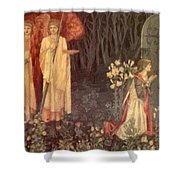 The Vision Of The Holy Grail To Sir Galahad Sir Bors And Sir Perceval Shower Curtain