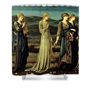 The Wedding Of Psyche 1895 Shower Curtain