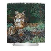 The Wild Cat  Shower Curtain