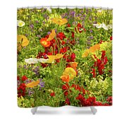 The World Laughs In Flowers - Poppies Shower Curtain