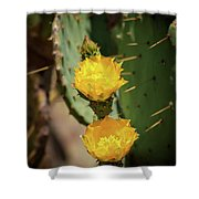 The Yellow Rose Of Arizona Shower Curtain by Rick Furmanek