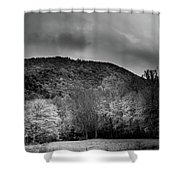 The Yellow Tree In Black And White Shower Curtain