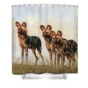 Three African Wild Dogs Shower Curtain