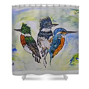 Three Kingfisher Birds - Painting By Ella Shower Curtain