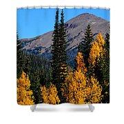 Thunder Mountain Aspens Shower Curtain
