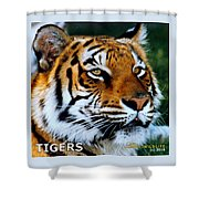 Tigers Mascot 2 Shower Curtain