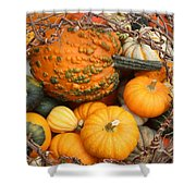 Time For Fall Shower Curtain
