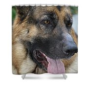 Timo Close-up Shower Curtain
