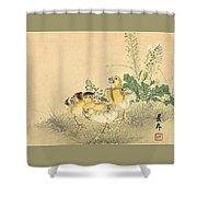 Top Quality Art - Keinen Kachoshokan 12view 3 Shower Curtain